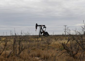 A pump jack operates in the Permian Basin oil and natural gas production area near Odessa, Texas, U.S., February 10, 2019.